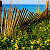 South Walton Beaches on 30A