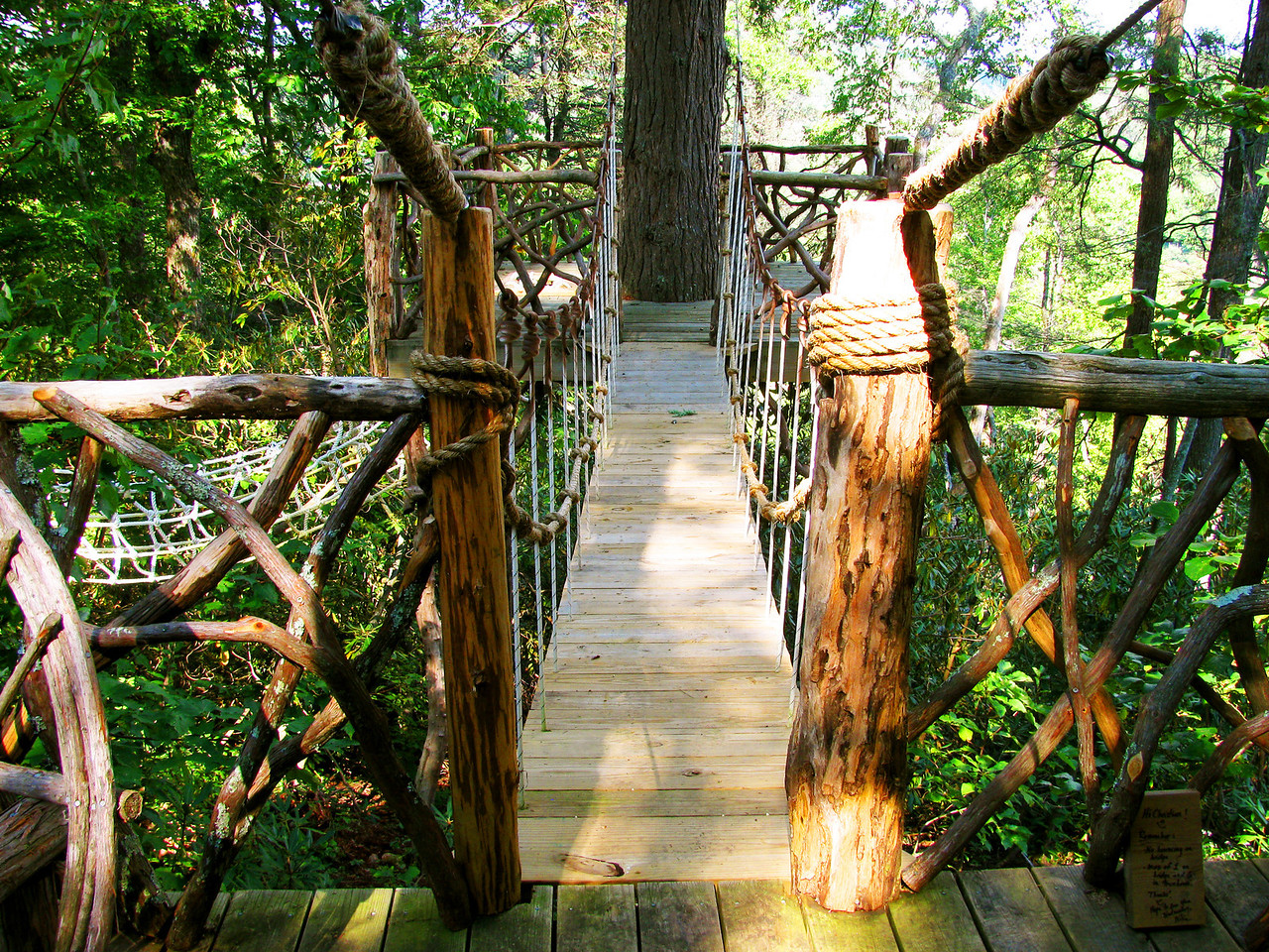 Bridge and treehouse