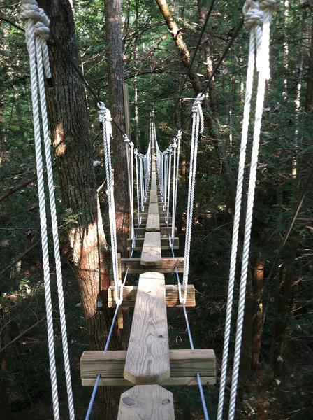 Canopy bridge