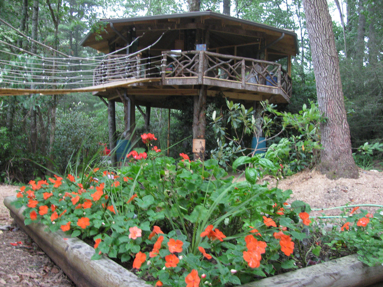 Camp Merrie-Wood treehouse