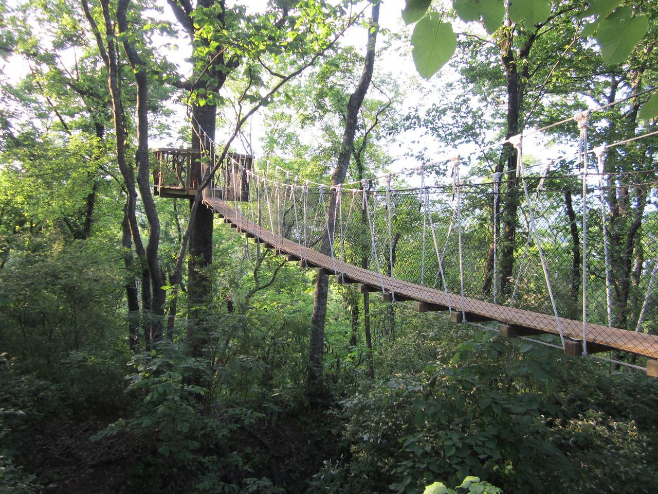 Bridge and tree house - Birmingham AL