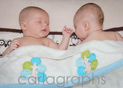 sleeping babies-