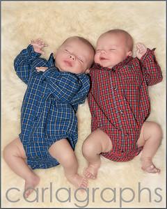 Twins on Fur -