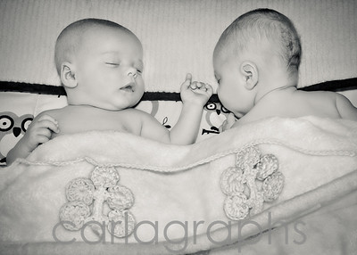 sleeping babies bw-