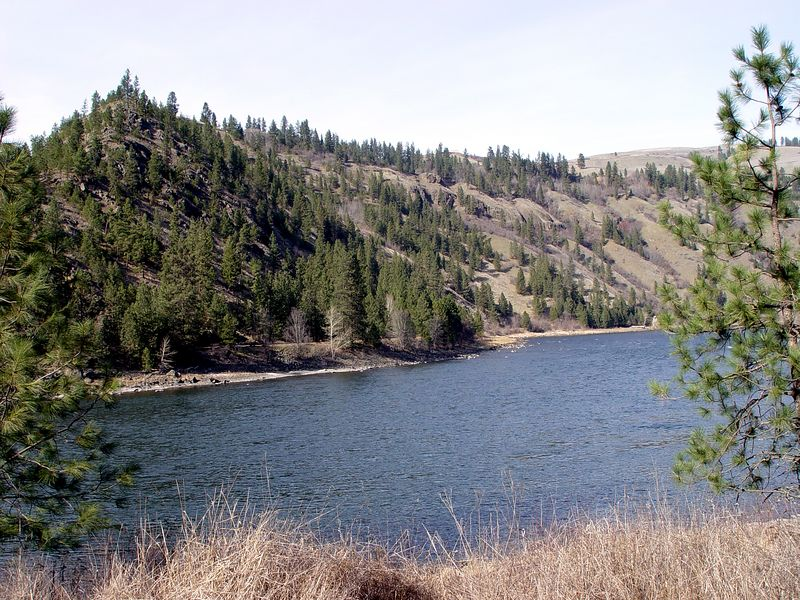 Harper's Bend on the Clearwater River is also  a good steelhead run