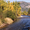 Early fall colors on Rock Creek, a gorgeous trout stream that joins the Clark Fork a few miles east of Missoula, MT