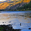 My friend, Doug Vanerka, is casting his fly to steelhead in the last fading light of October 7, 2010.  Clearwater River just below Harper's Bend.