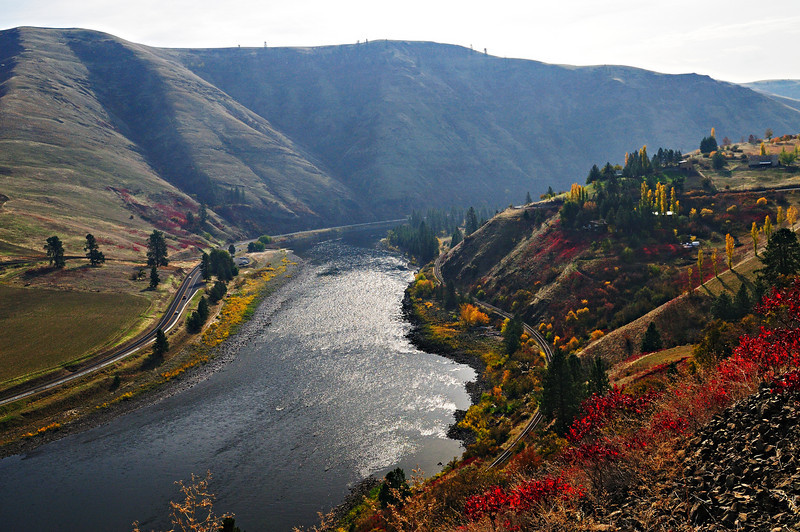 """""""Y"""" Run'. Even looking directly into the sun, the fall colors of sumac, poplars and maples beautify this favorite steelhead fishing run that has produced lasting memories for me as well as many other anglers."""