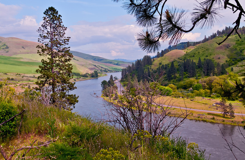 Ankeny Bend on the Clearwater River, May 2011