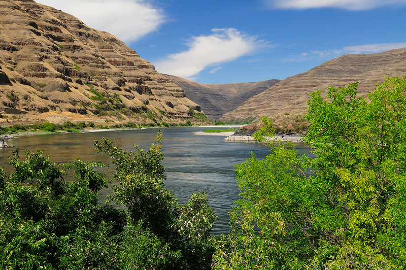 Buffalo Eddy on the Snake River.  Years ago it was reported 600 lb Sturgeon were caught here.