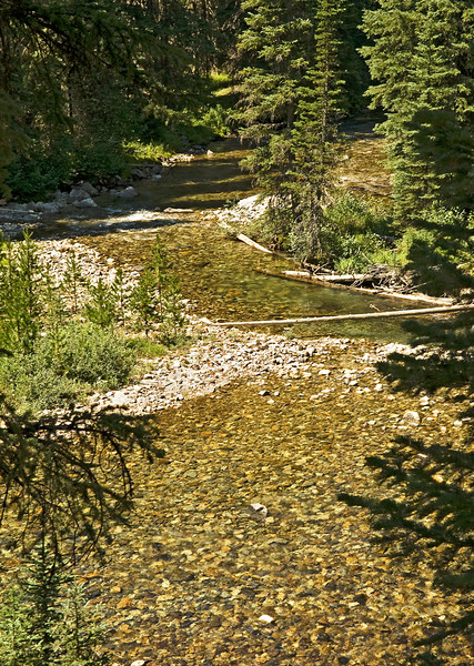 The Lostine River draining the Wallowa Mountains in Eastern Oregon runs clear all year long.  In some places it is a quiet stream such as above showing its wilderness beauty.