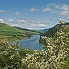 The Clearwater River in May framed by Syringa blossoms.  Note the eagle soaring over the river.  In Photo Sizes, click on Original for an expanded view