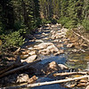 The look downstream from the Bowman Trail crossing is quite descriptive of this wilderness river.