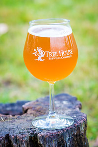 treehouse-0046