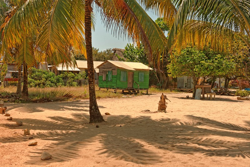 Typical house and palm shadows