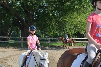 Bella 2012 Horse Show