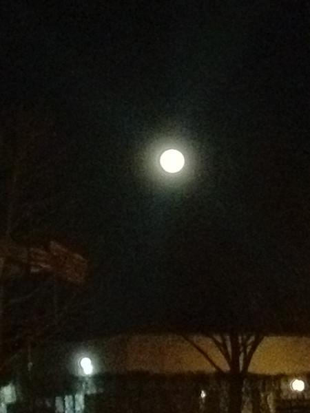 Bella's 6th FULL moon (Jan 27th 2013)