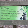 Turtle facts.