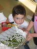 Silk worms raised by Park Day kindergarten class.