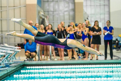 379 - RobertEvansImagery com  Minnetonka Girls Swim_REI7202