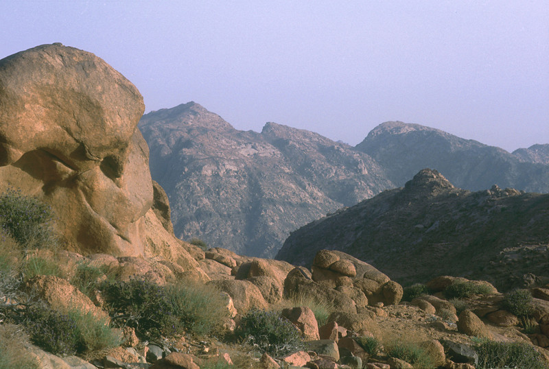 South Sinai Highlands, O. Fragman