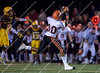 Brother Rice vs. Adams<br /> Boy's High School Football<br /> 2008 MHSAA Districts