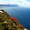 North West coast from Cape Point