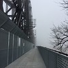 Foggy New Year