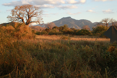 Mkomazi NP Tanzania 2014 06 30.JPG