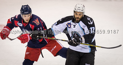 AHL_Admirals v Grand Rapids_20150227-126