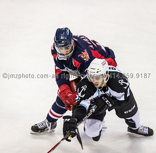AHL_Admirals v Grand Rapids_20150227-293