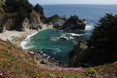 McWay Falls with Amaryllis