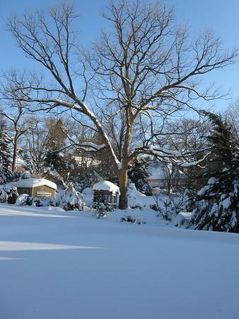 Bethesda. Winter. 2009-10