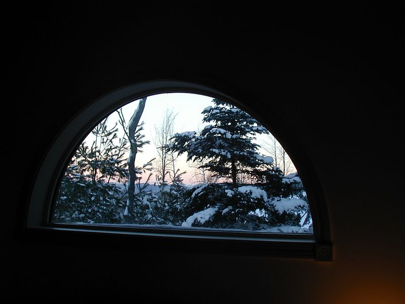 view out of master bedroom window