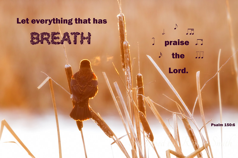 Everything that has breath