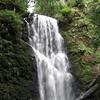 Berry Creek Falls.  IMG_0439.JPG
