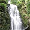 Berry Creek Falls.  IMG_0440.JPG