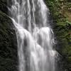 Berry Creek Falls.  IMG_0446.JPG
