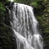 Berry Creek Falls.  IMG_0442.JPG