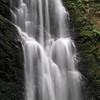 Berry Creek Falls.  IMG_0445.JPG