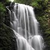 Berry Creek Falls.  IMG_0444.JPG