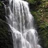 Berry Creek Falls.  IMG_0450.JPG