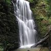 Berry Creek Falls.  IMG_0452.JPG