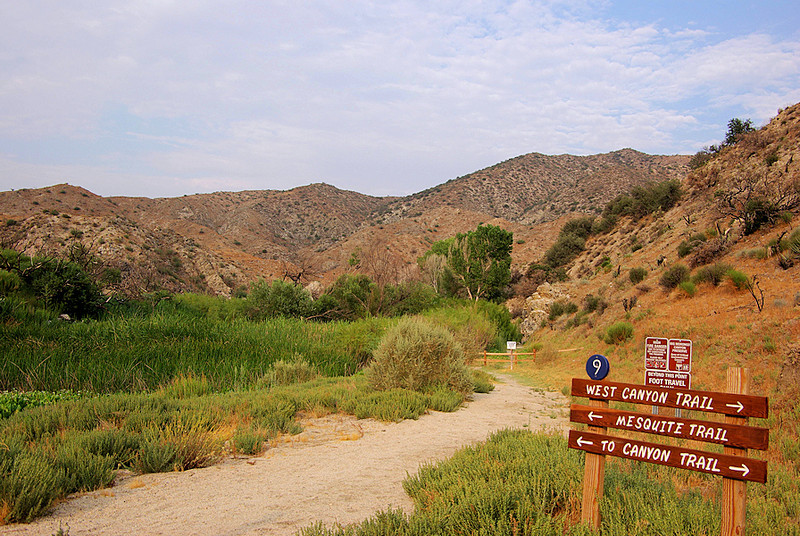 Another Morongo scenic showing the trail system. Yucca Ridge Trail runs along the ridge in the distance.
