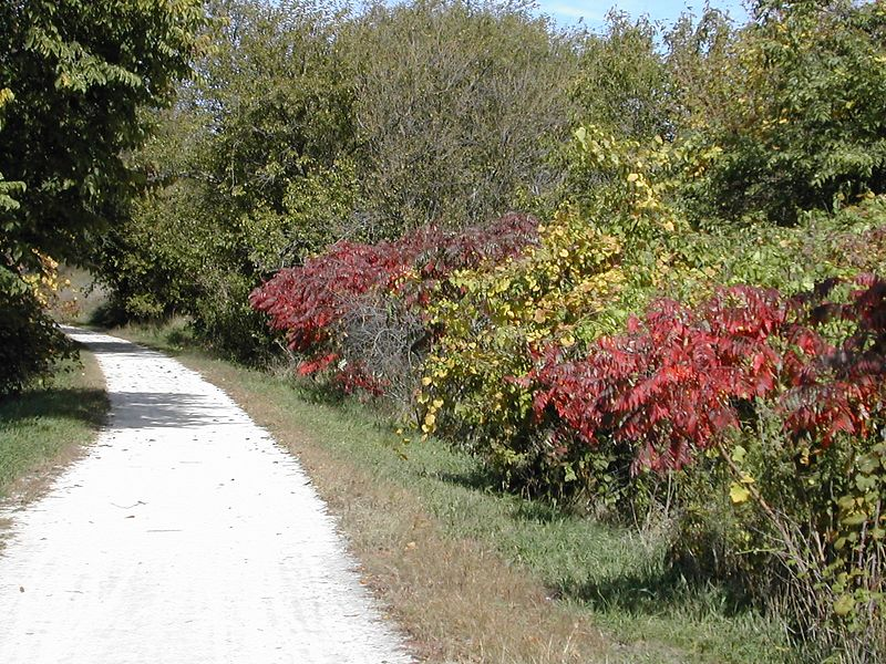 Some early fall colors on the wabash trail north end near council bluffs.