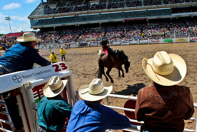 Officials and staff in western hats watch the hang time of a bronco during the Calgary Stampede.