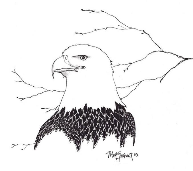 Eagle <br /> Art by Matt Gearheart