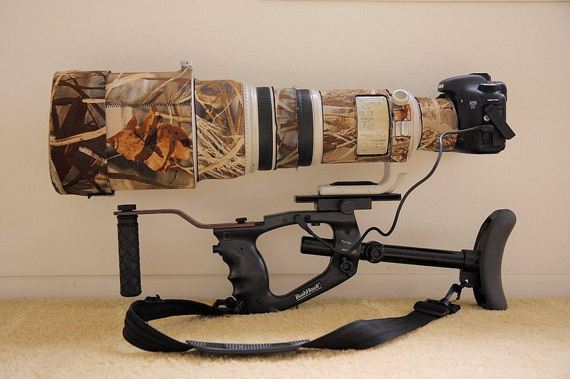 "The camera setup I take around with me while hiking/birding, the Canon 7D with the 500 f4 lens, all attached to a BushHawk (  <a href=""http://www.bushhawk.com"">http://www.bushhawk.com</a> ) shoulder mount. The cord is a shutter release so the shutter can be activated by pressing the button on the trigger grip. This setup is a big aid in stabilization, especially for birds-in-flight shots."