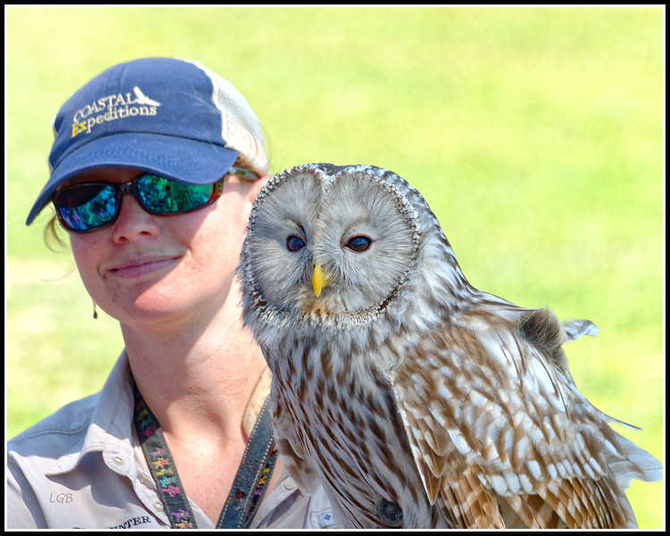 Ural Owl and Trainer - AC