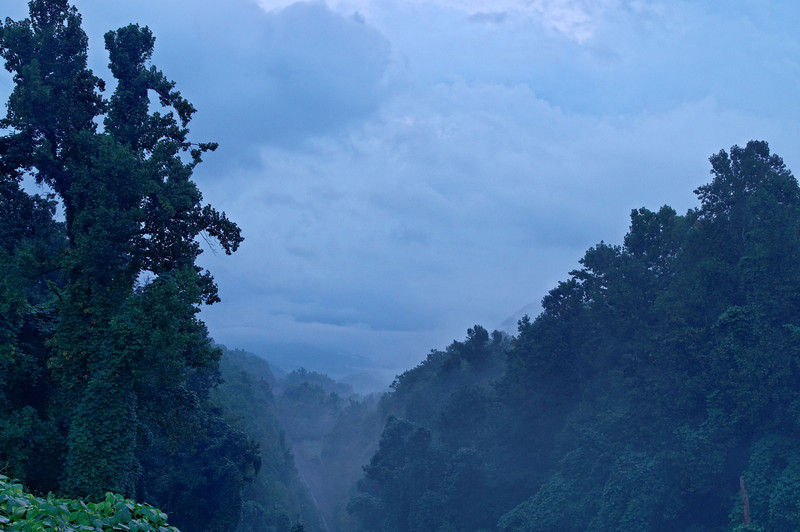 Black Mountain Morning Fog